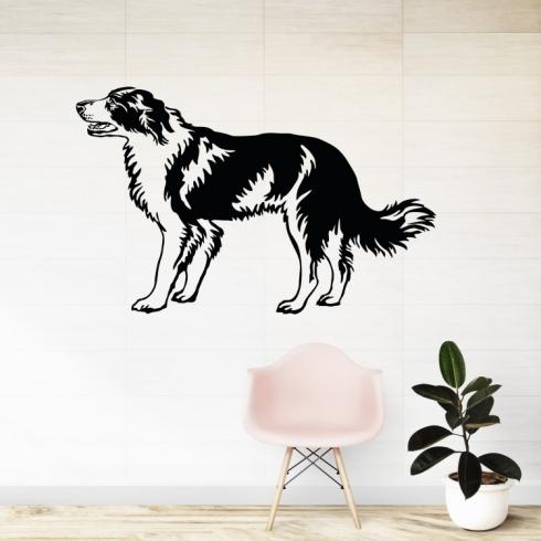 Pes Border kolie - vinylová samolepka na zeď